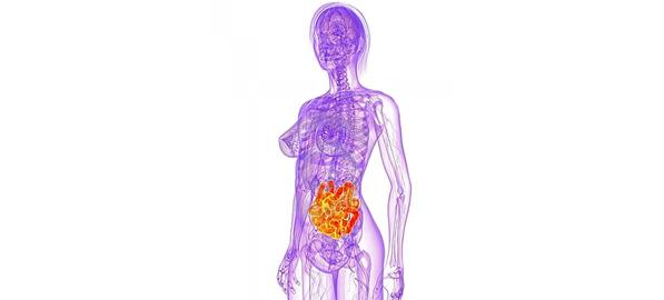 Dezechilibrele florei intestinale